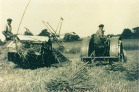 Farming at Birch