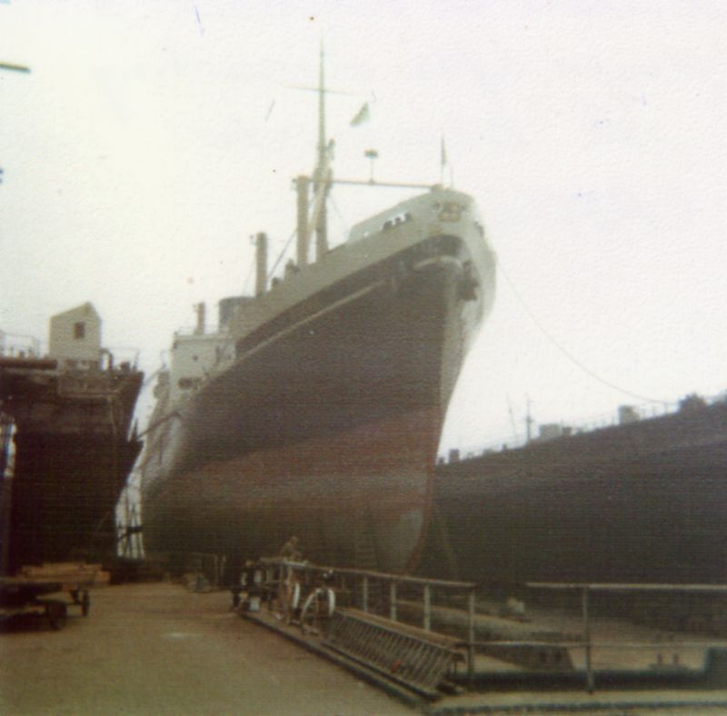 SUEVIC in a floating dock at Schiedam - Nolan Loveridge