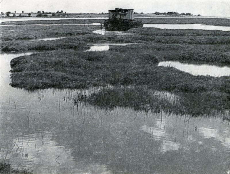 Looking over the Ray towards Mersea from the Strood - an extensive marshy tract veined and flecked in every part with water. At high tide the appearance is that of a vast surface of moss or Sargasso weed with rents and patches of shining water traversing and dappling it in all directions (Mehalah).