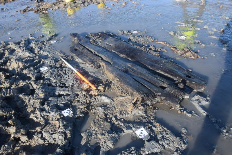Board walk timbers found off Coopers Beach