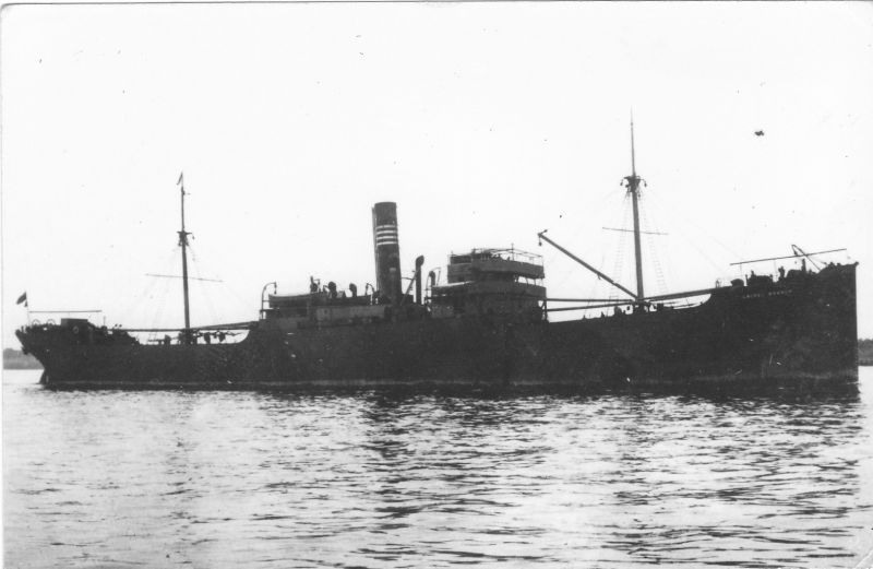 LAUREL BRANCH 3,752 tons gross, built 1903. Laid up in River Blackwater c1930. Date: c1930.