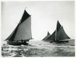 11. ID BF70_001_031_001 Photo --- smacks racing in the regatta 1904. The ELISE (Capt. Green) and the MARIA (J. Gunn) both from Wivenhoe, and Capt. William W Cranfield's SUNBEAM from...
