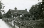 4. ID IA003724 Cottage in Salcott where Nancy Cullum and her mother lived. Date not known but probably c1941. Pansies are growing in front of the cottage. See Farming...