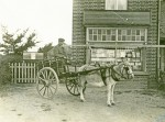 104. ID MMC_P755_155 Cleghorn, chemist in Barfield Road. Cutty with donkey and cart.